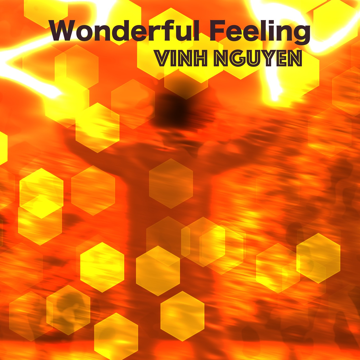 wonderful-feeling-music-cover-art-70per-jpg-x1