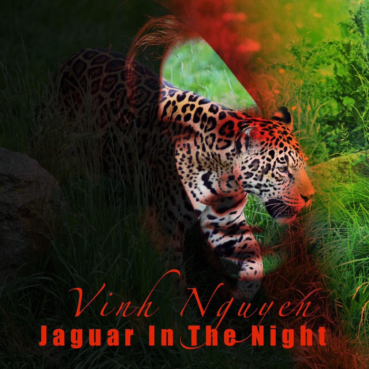 Jaguar In The Night Music Cover Art JPG 70per